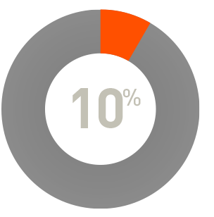 pie chart showing 10 percent