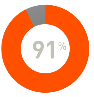 Pie chart showing 91 percent